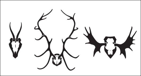 Y-300 - Antlers stencil.